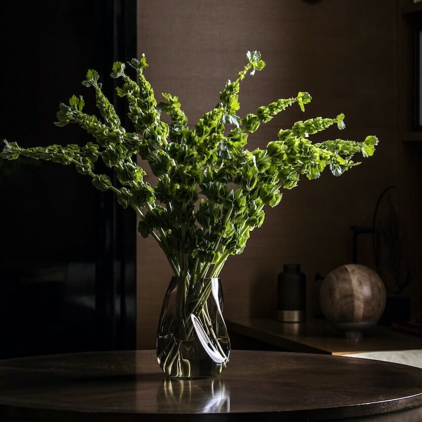 Bloom Flower Delivery | Molten Sepia Brown Glass Vase