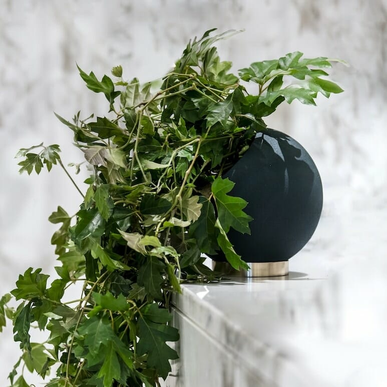 Bloom Flower Delivery | Forest Green Globe Plant Pot