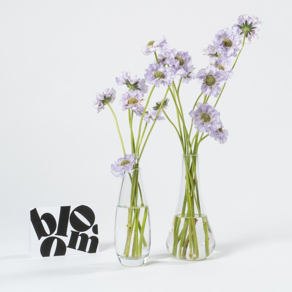 Bloom Flower Delivery | Clear Glass Bud Vase