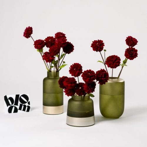 Subscription Flower for the Week - Red Dahlia