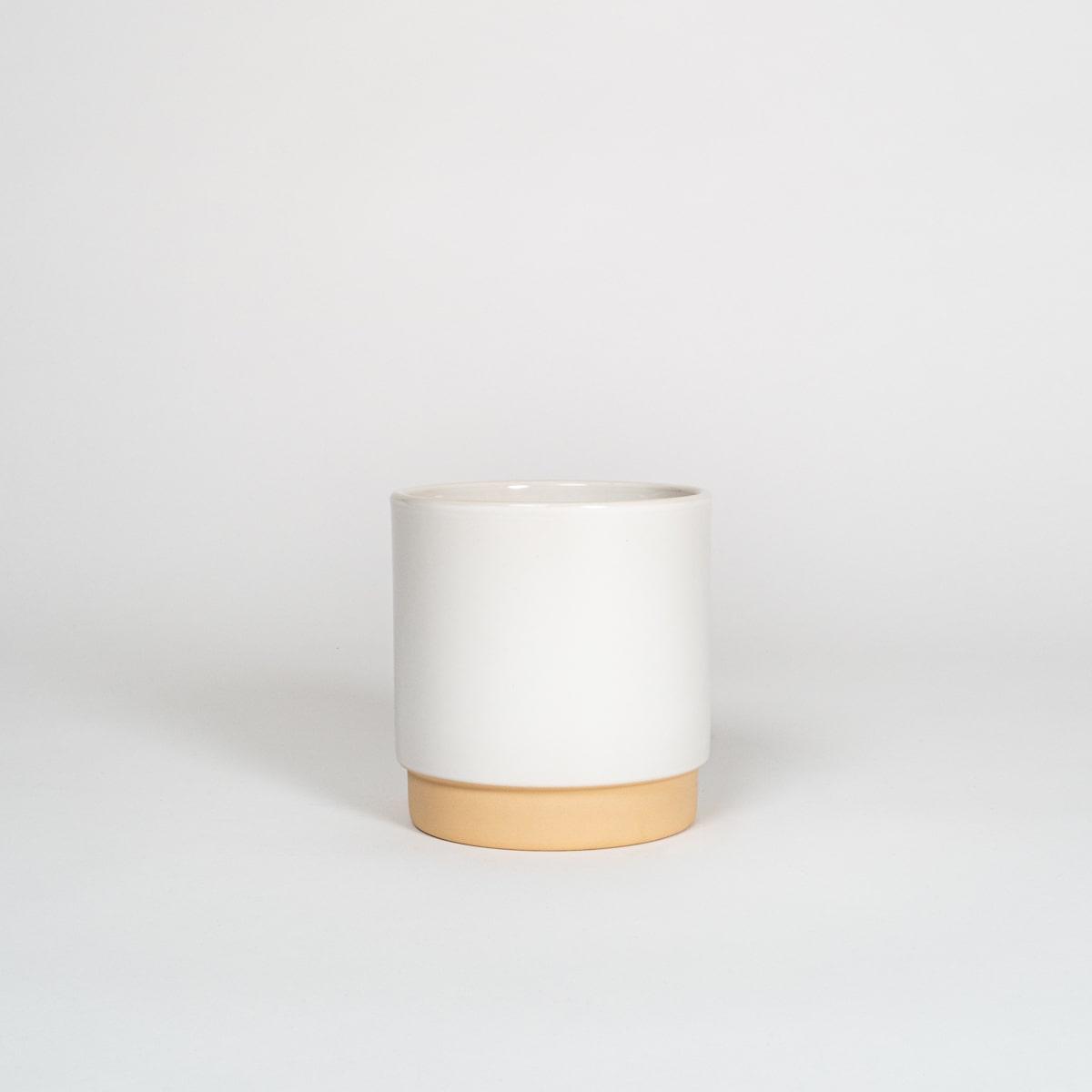 Bloom Flower Delivery | Large Polar White Ceramic Plant Pot
