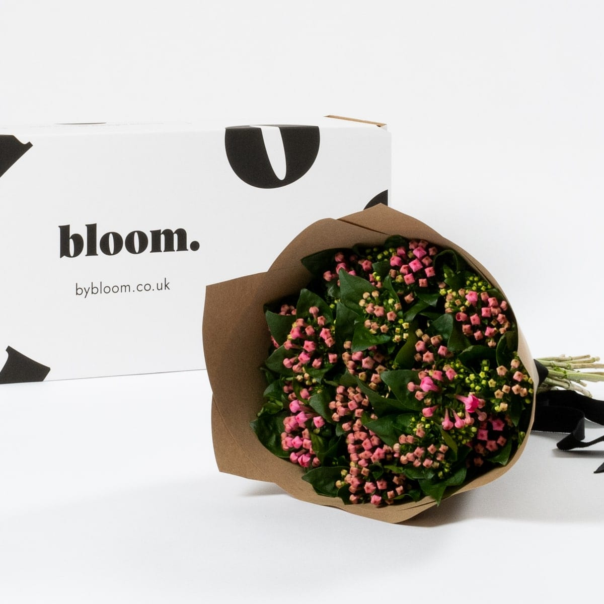 Bloom Flower Delivery | Cerise Pink Bouvardia