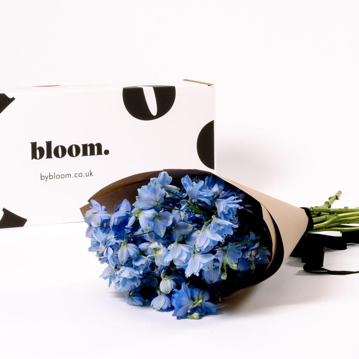 Bloom Flower Delivery | Glacier Blue Delphinium