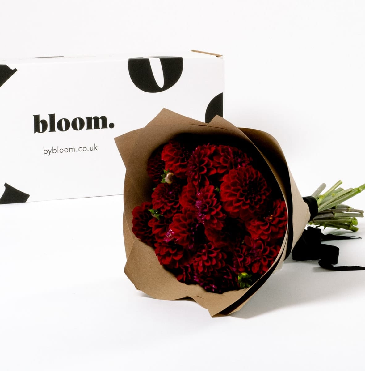 Bloom Flower Delivery | Merlot Red Dahlia
