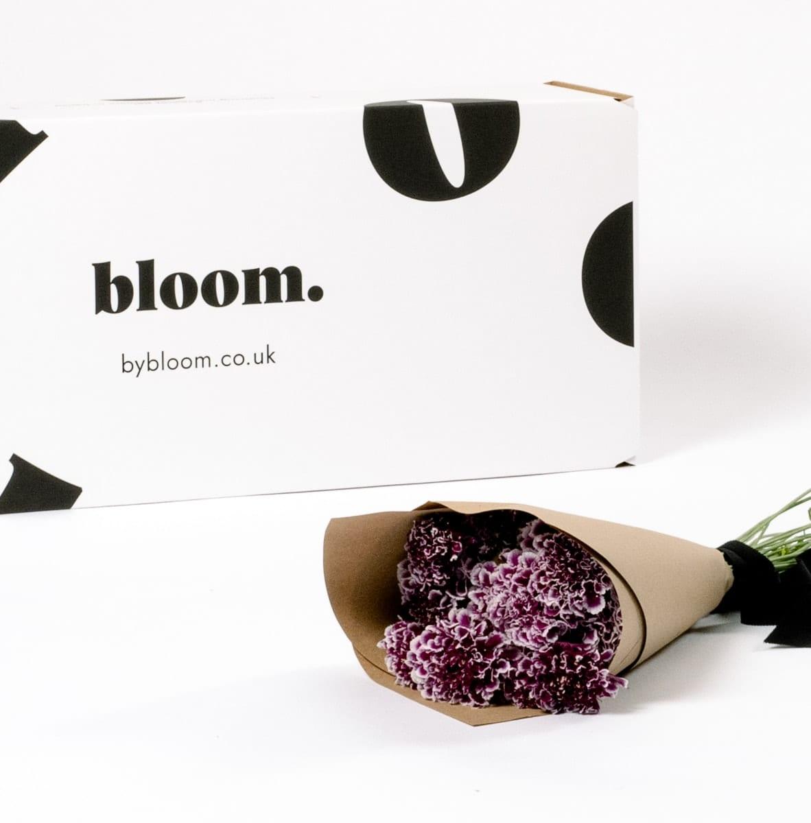Bloom Flower Delivery | Amethyst Purple Scabiosa