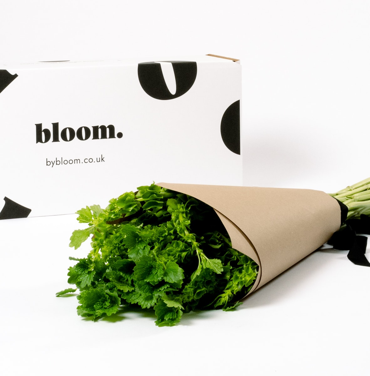 Bloom Flower Delivery | Green Moluccella