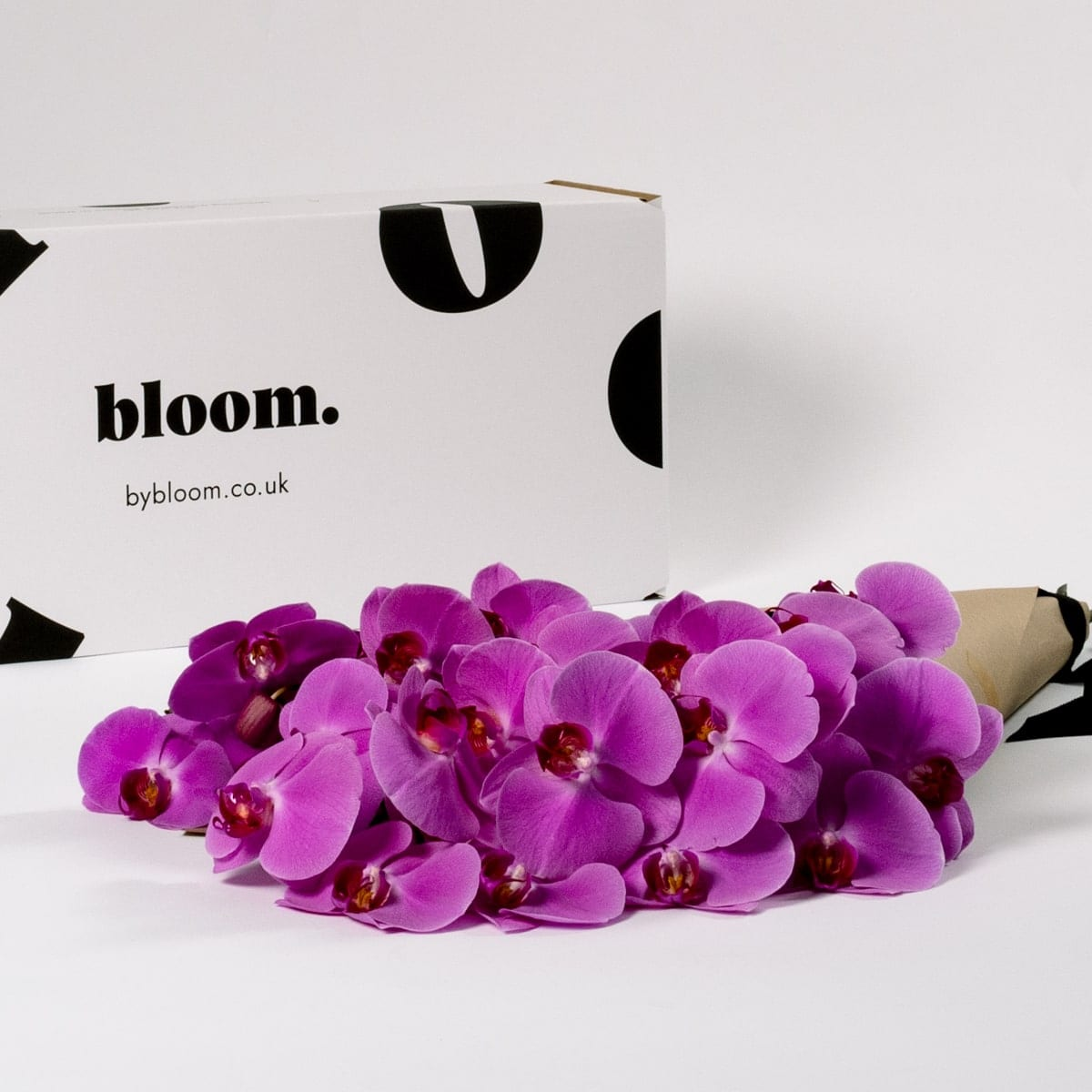 Bloom Flower Delivery | Cerise Pink Phalaenopsis Orchid