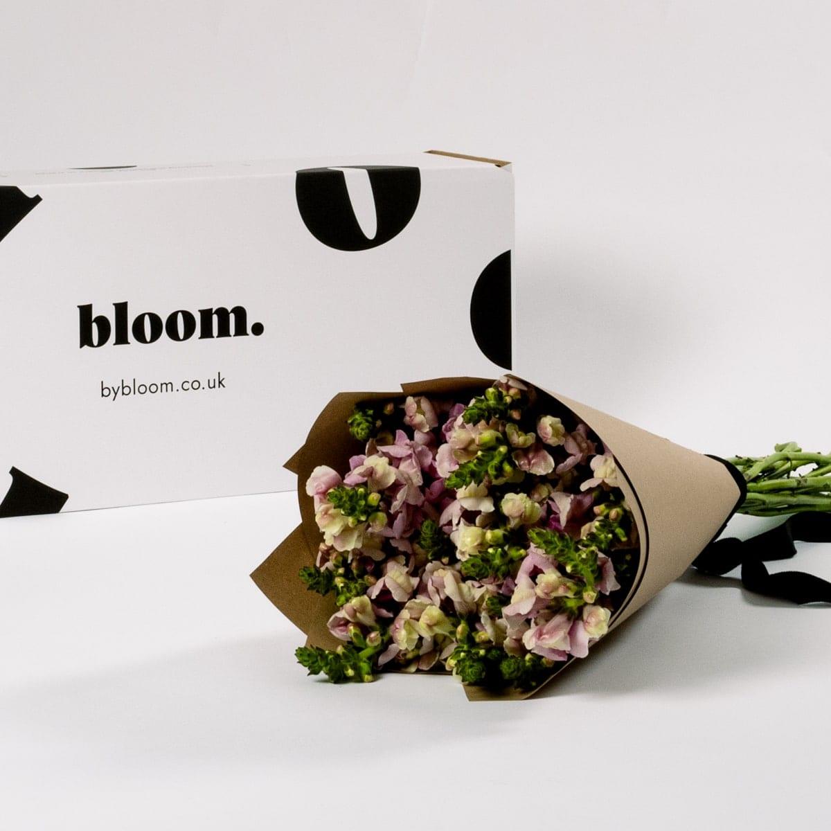 Bloom Flower Delivery | Lavender Purple Snapdragons