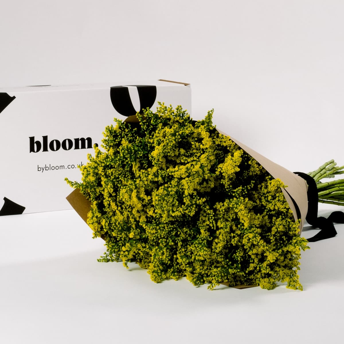 Bloom Flower Delivery | Golden Glory Yellow Solidago