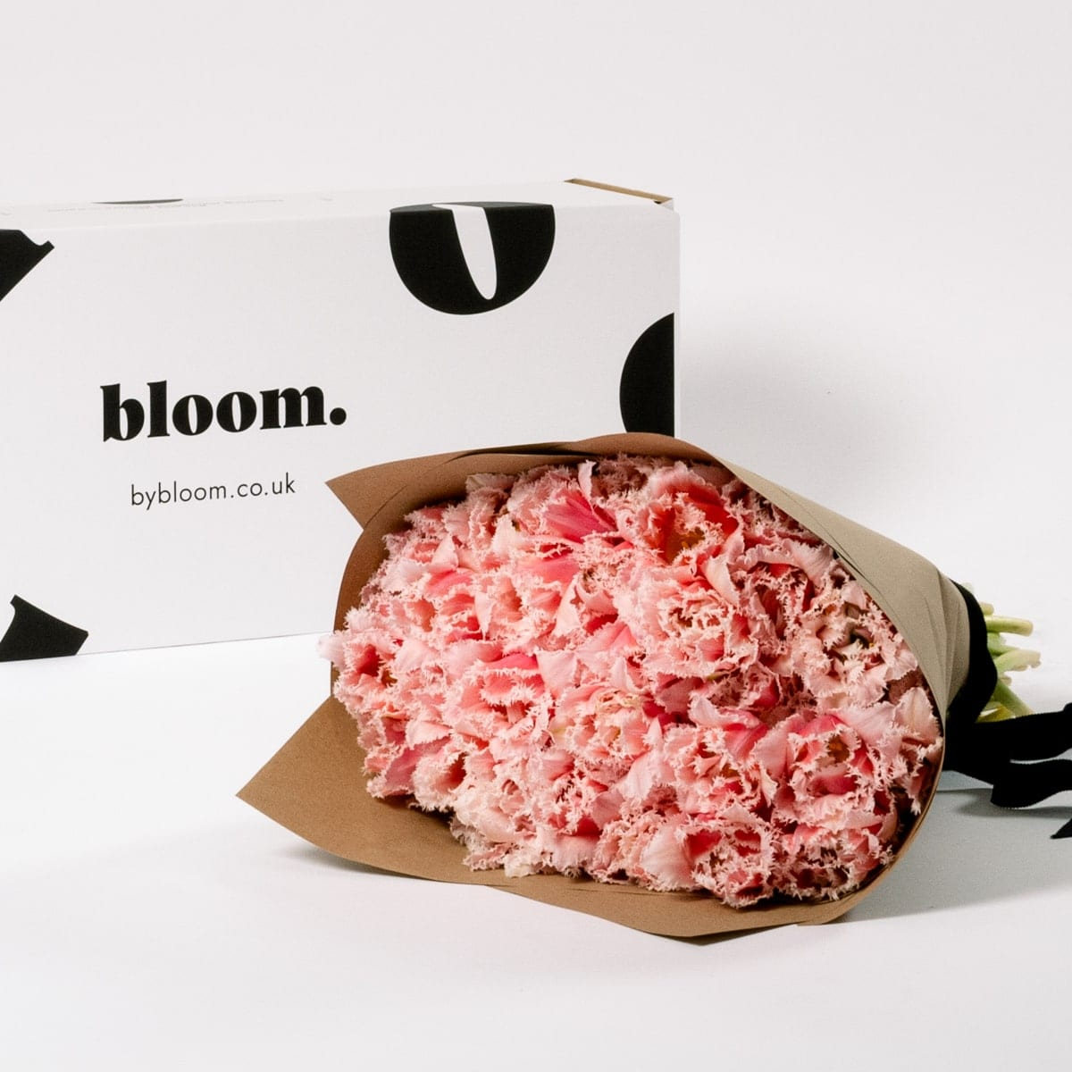 Bloom Flower Delivery | Cotton Candy Pink Fringe Tulip