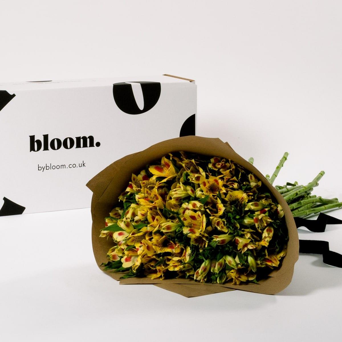 Bloom Flower Delivery | Sunshine Yellow Alstroemeria