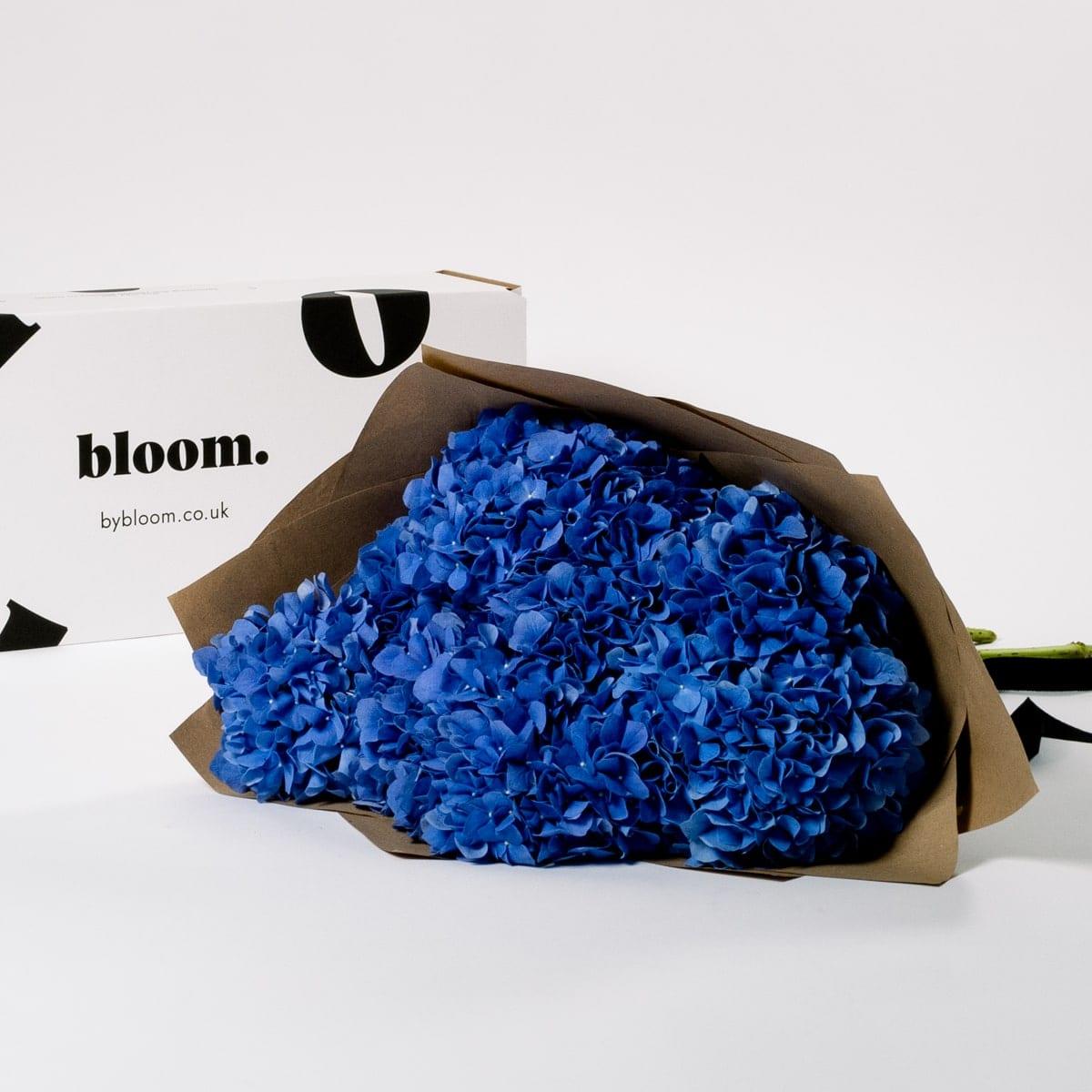 Bloom Flower Delivery | Ultra Marine Blue Hydrangea