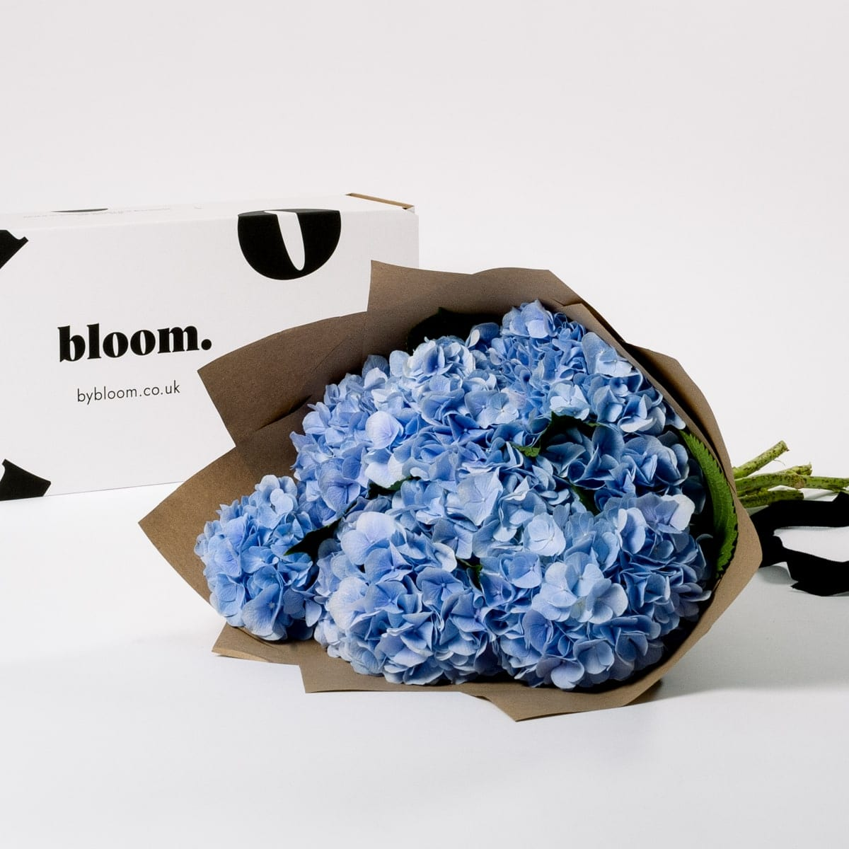 Bloom Flower Delivery | Powder Blue Hydrangea