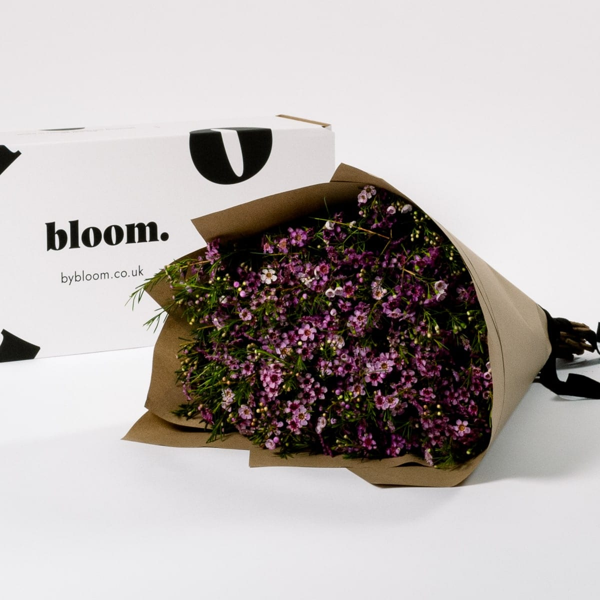 Bloom Flower Delivery | Cotton Candy Pink Wax Flower
