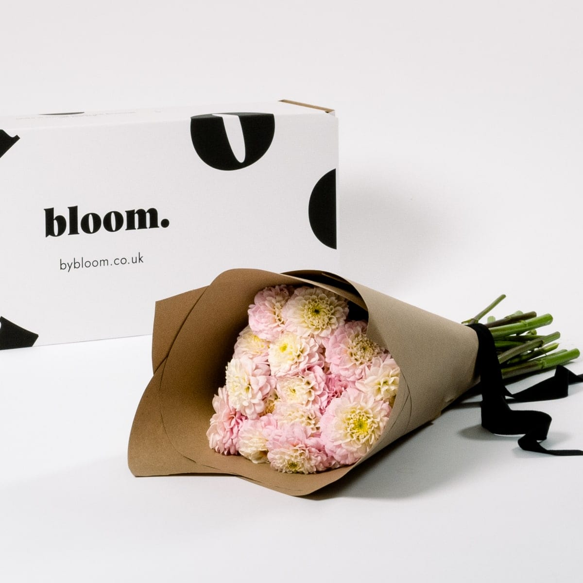 Bloom Flower Delivery | Cotton Candy Pink Dahlia