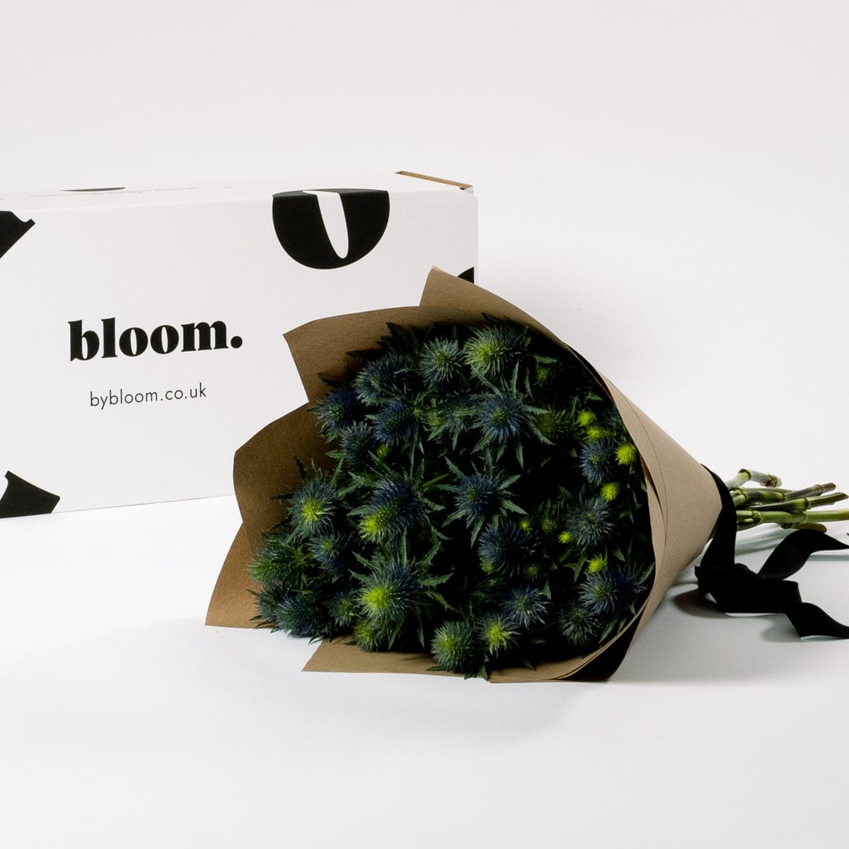 Bloom Flower Delivery | Blue Star Thistle