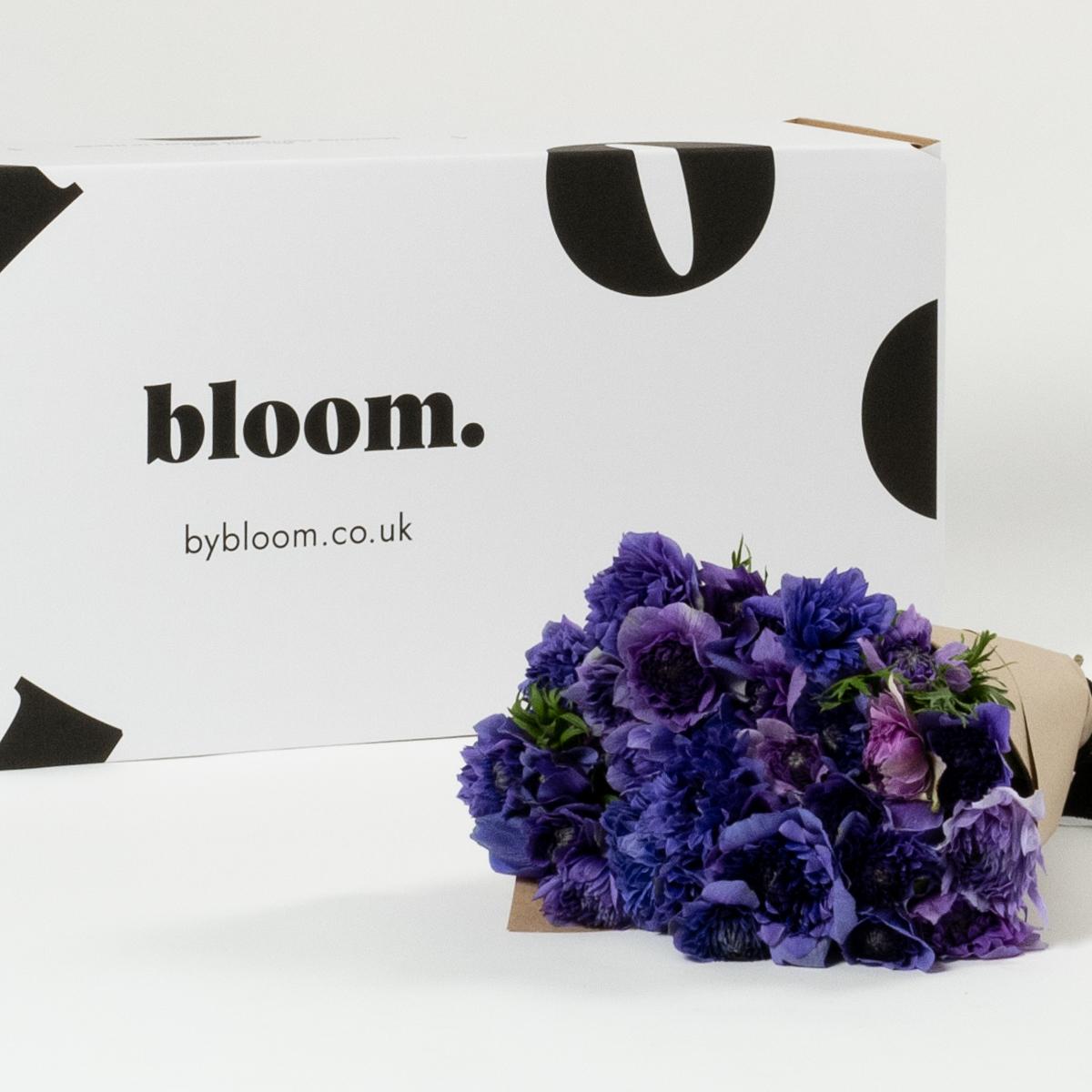 Bloom Flower Delivery | Amethyst Purple Full Star Anemones