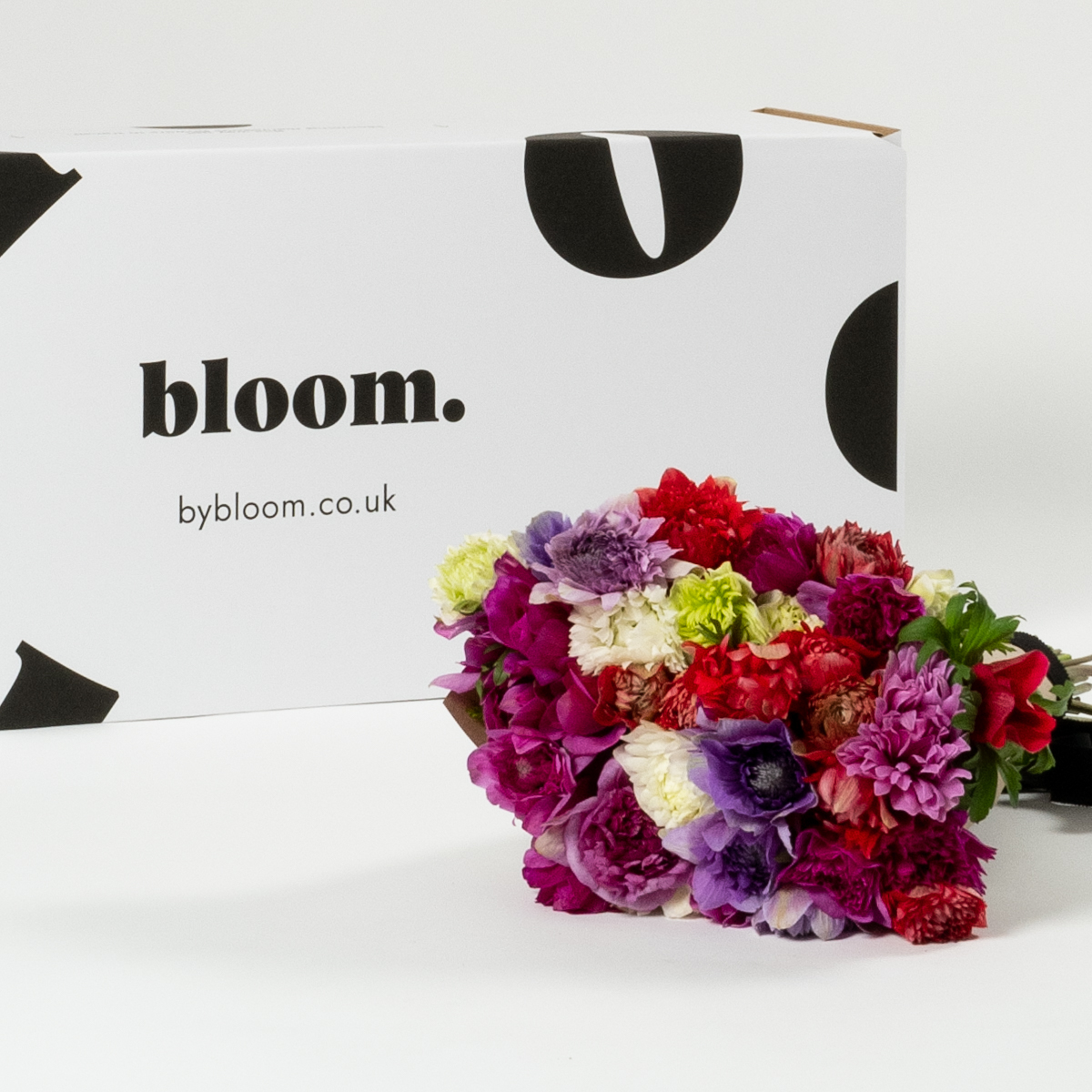 Bloom Flower Delivery | Mixed Colour Full Star Anemones