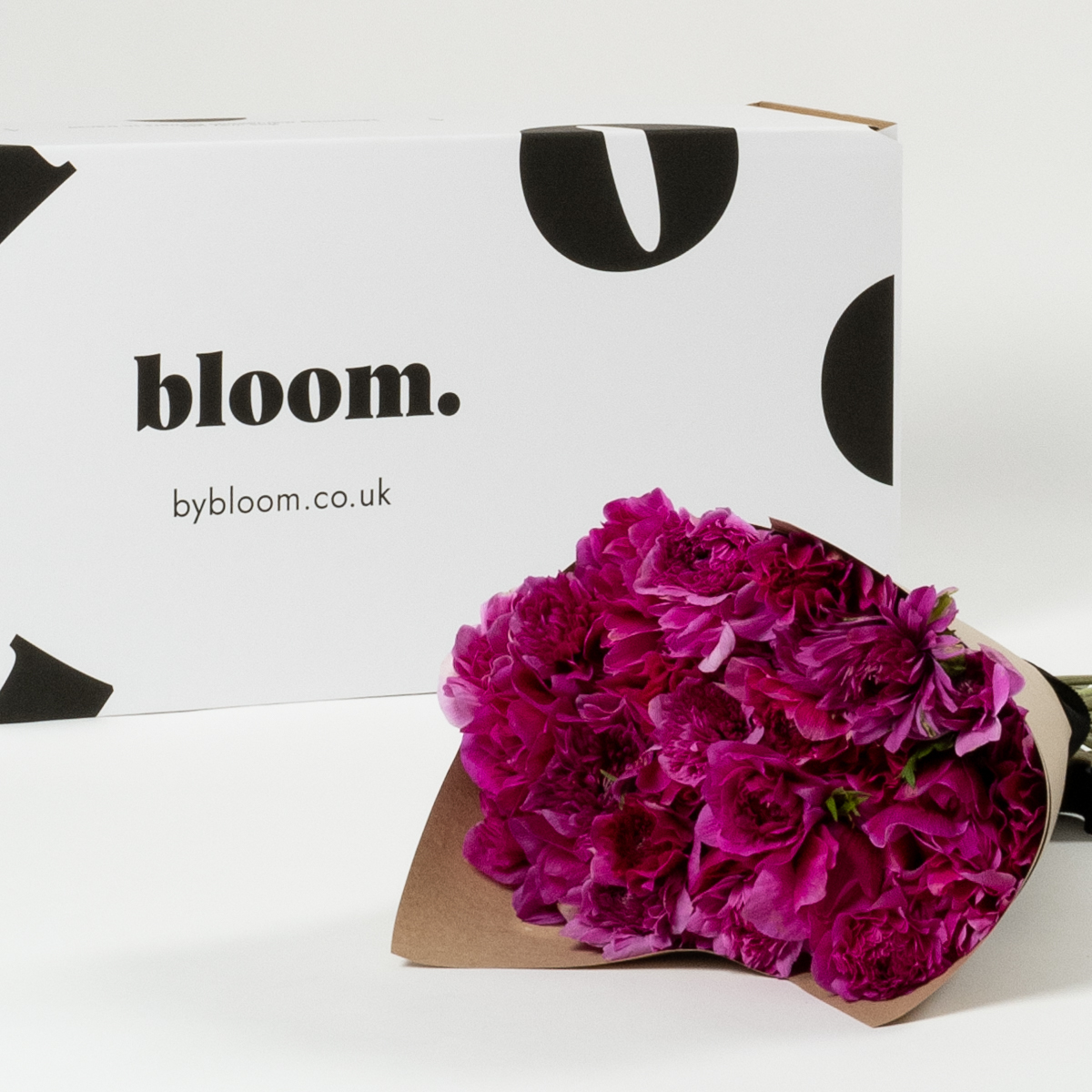 Bloom Flower Delivery | Cerise Pink Full Star Anemones