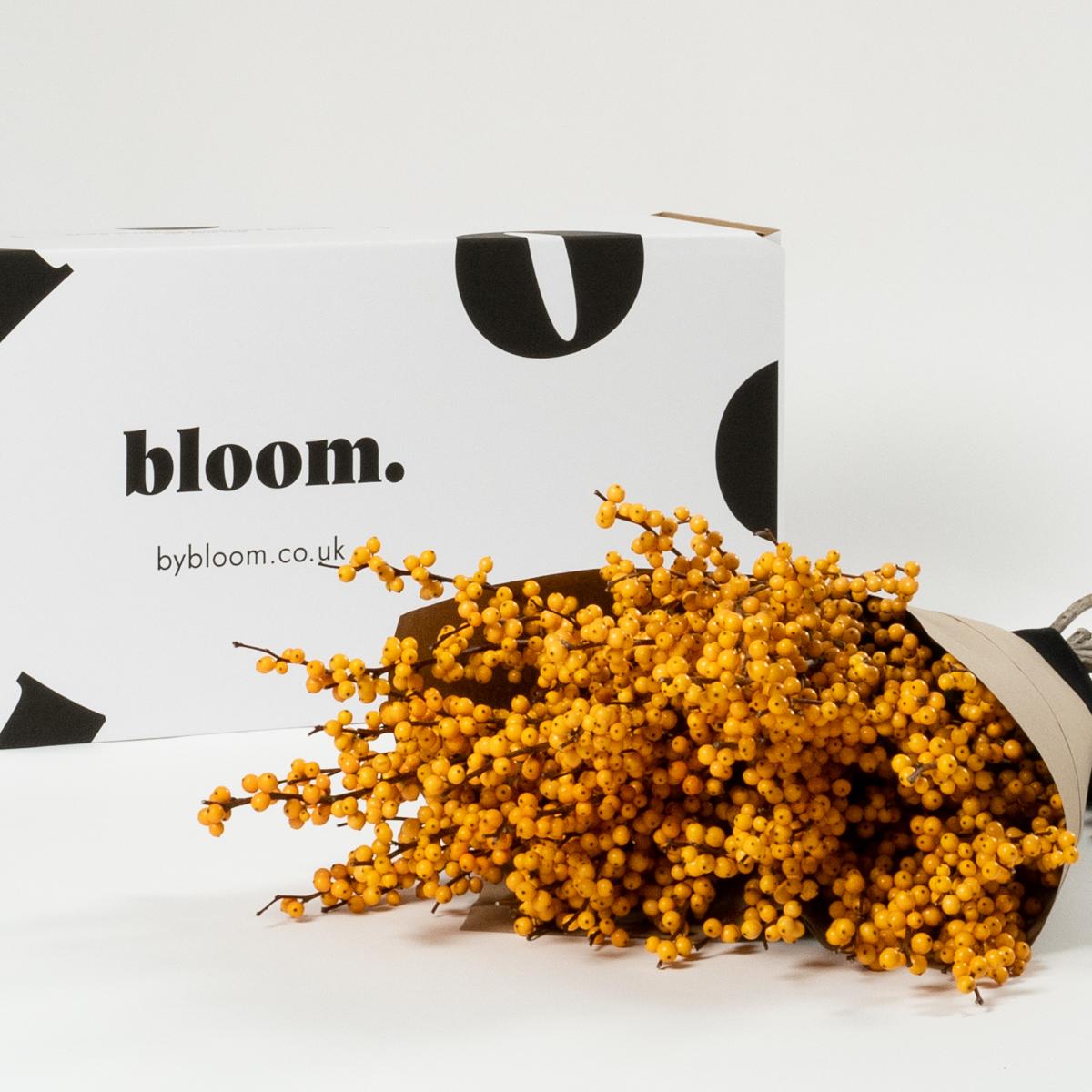 Bloom Flower Delivery | Cinnamon Orange Ilex