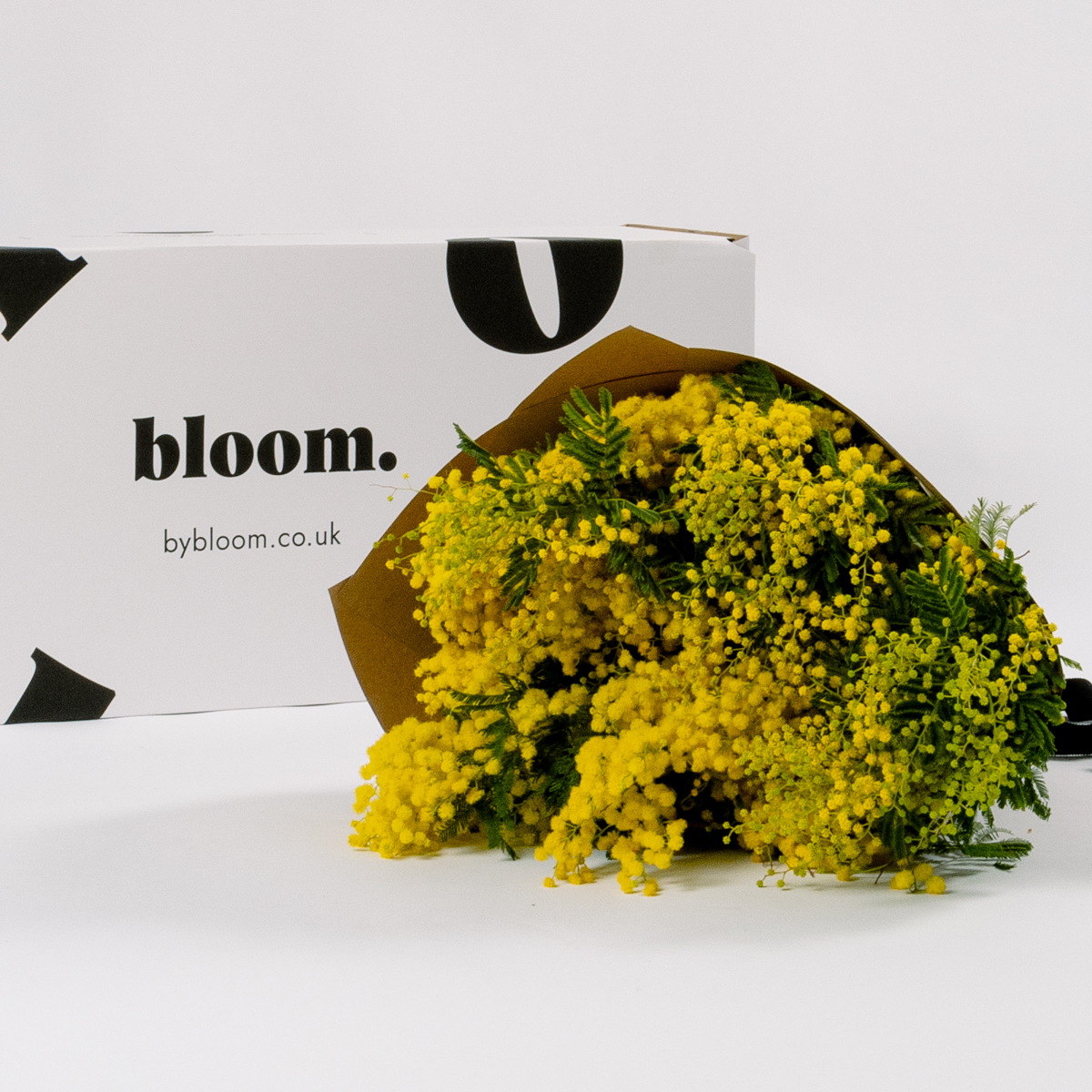 Bloom Flower Delivery | Sunshine Yellow Mimosa