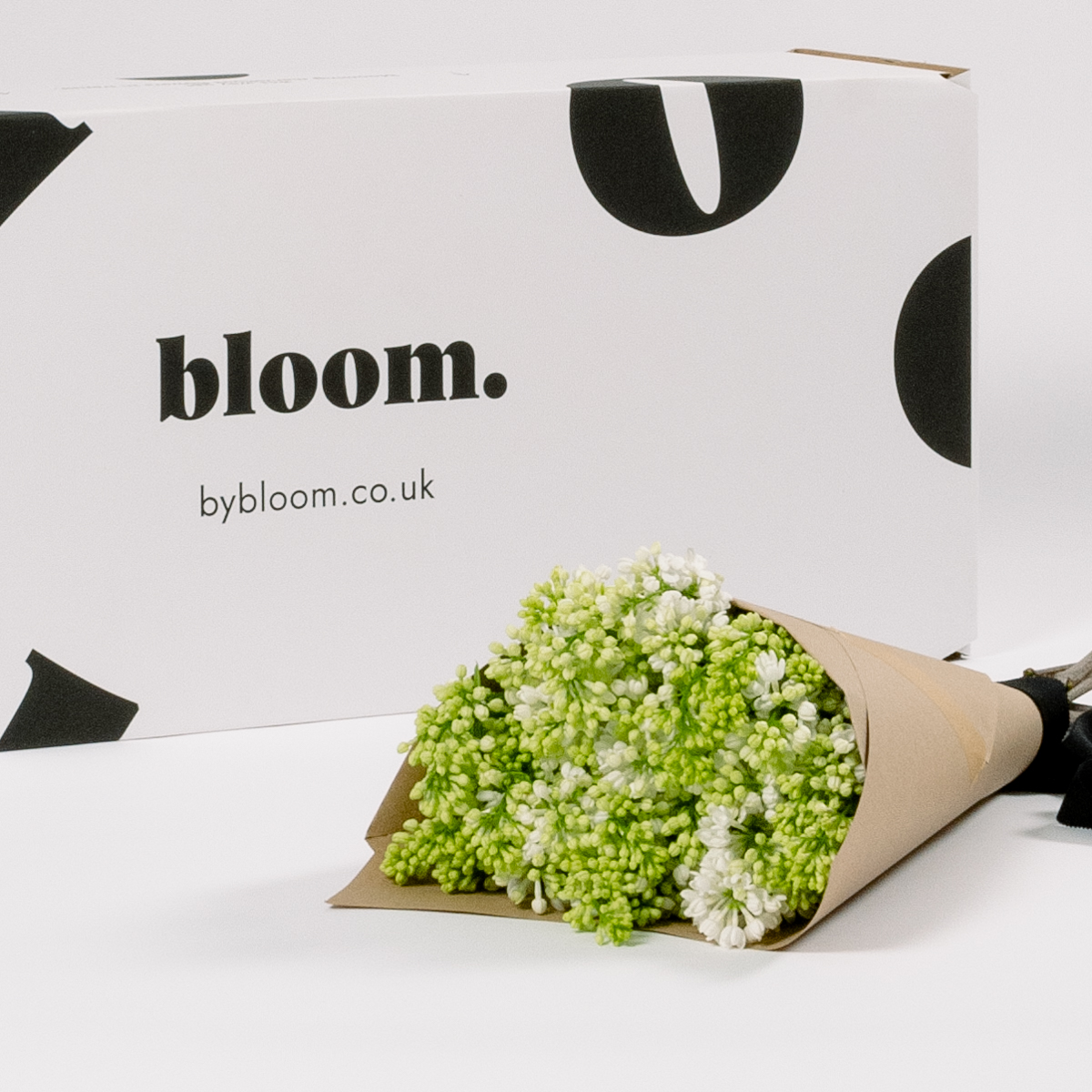 Bloom Flower Delivery | Porcelain White Lilac
