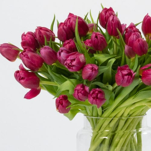 Market Fresh Blooms