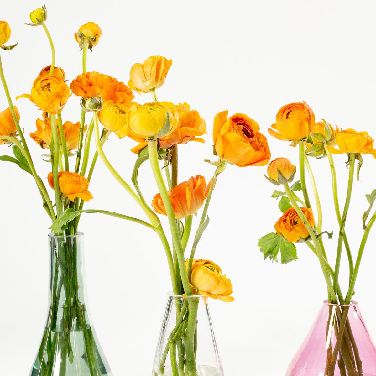 Bloom Flower Delivery | Tangerine Orange Ranunculus