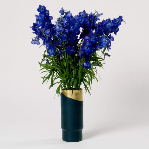 Subscription Flower for the Week - Dark Blue Larkspur