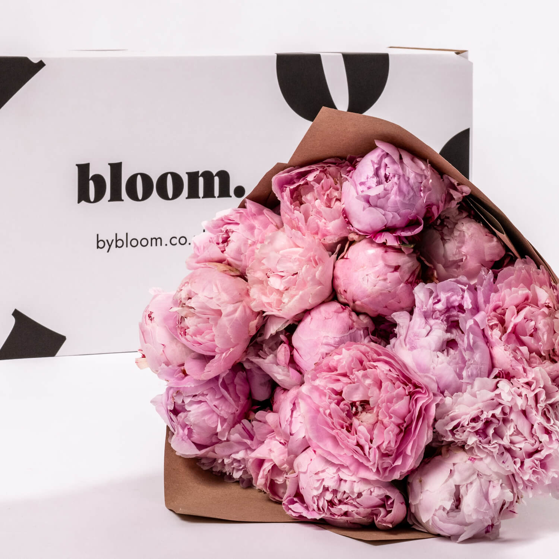 Bloom Flower Delivery | Sarah Bernhardt Pink Peony