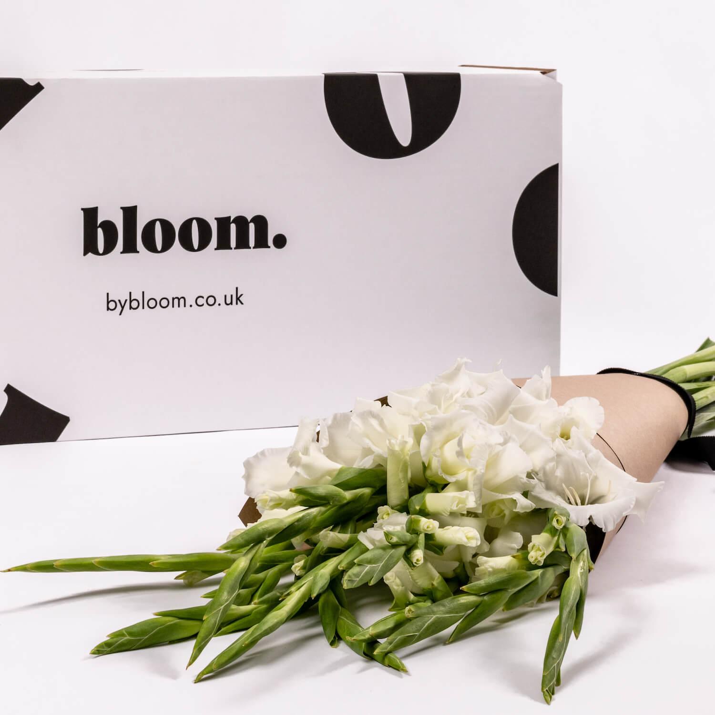 Bloom Flower Delivery | White Gladioli