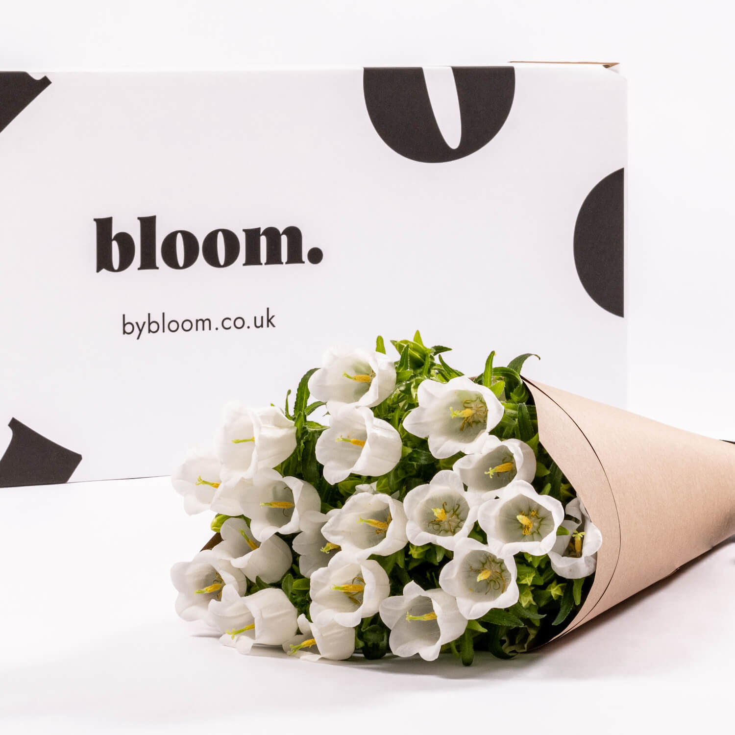 Bloom Flower Delivery | White Campanula