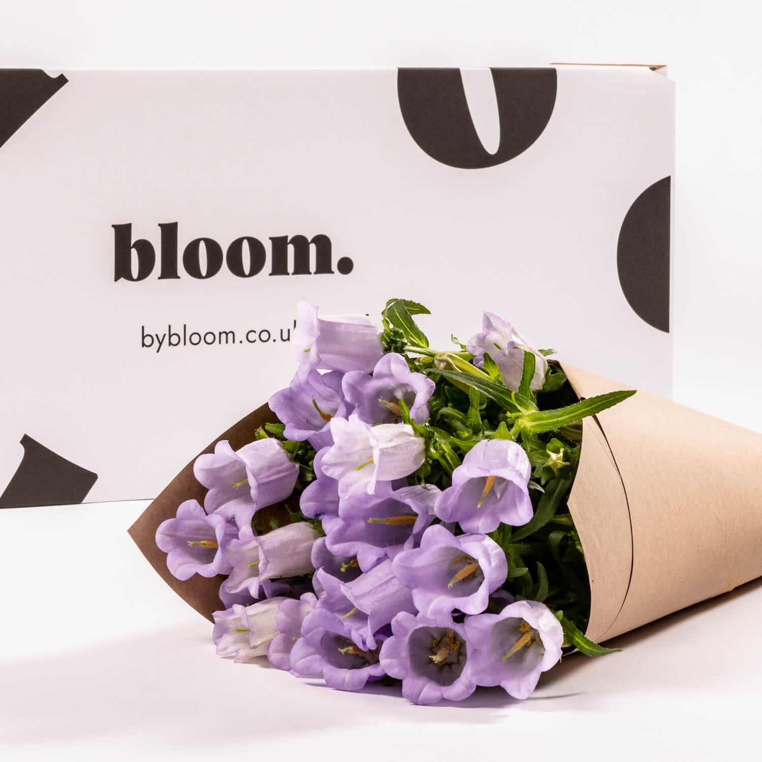 Bloom Flower Delivery | Lilac Campanula
