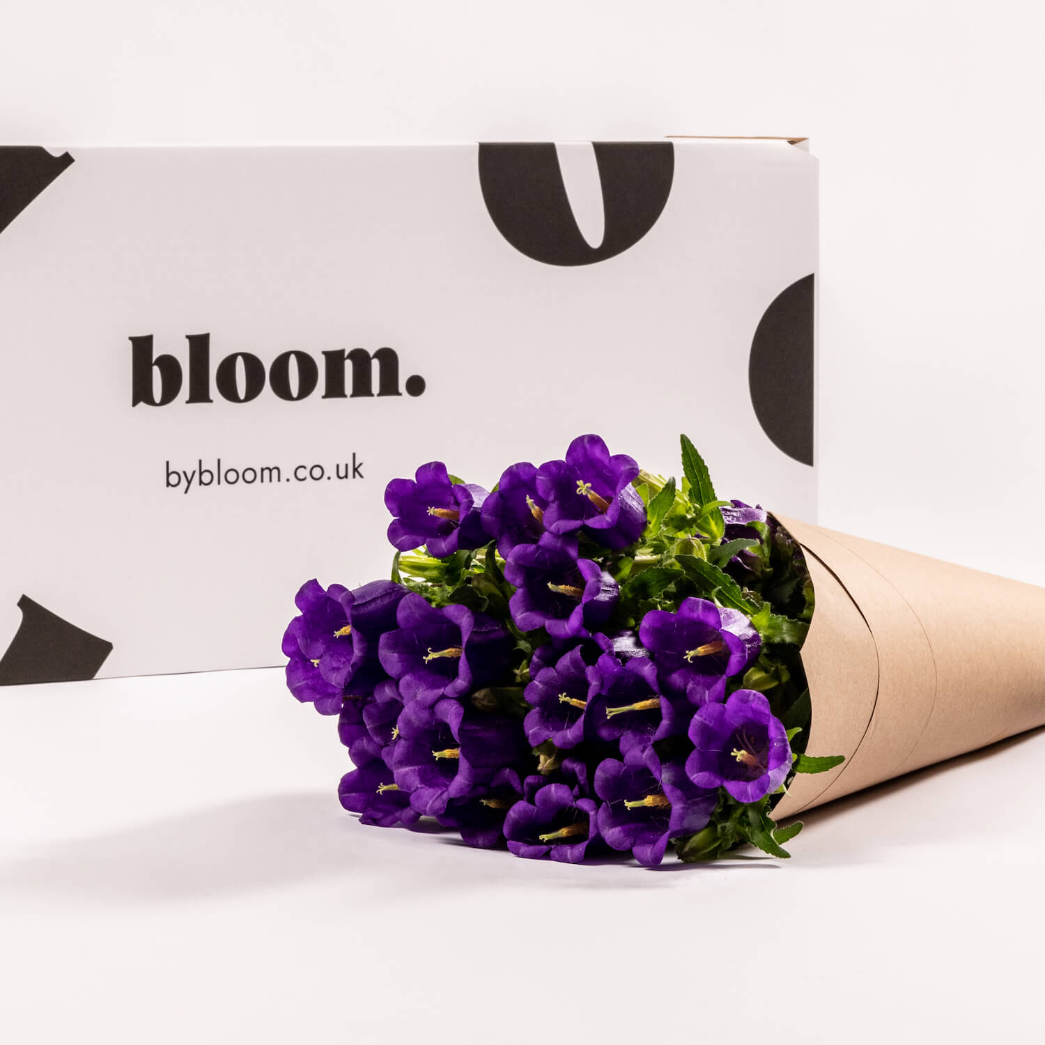 Bloom Flower Delivery | Purple Campanula