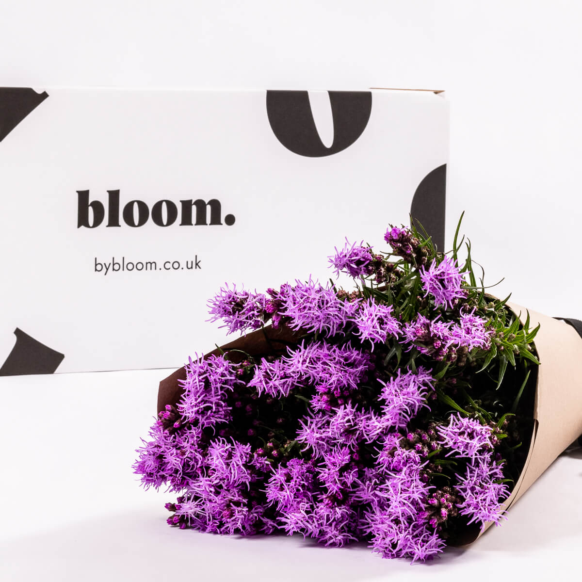 Bloom Flower Delivery | Purple Liatris