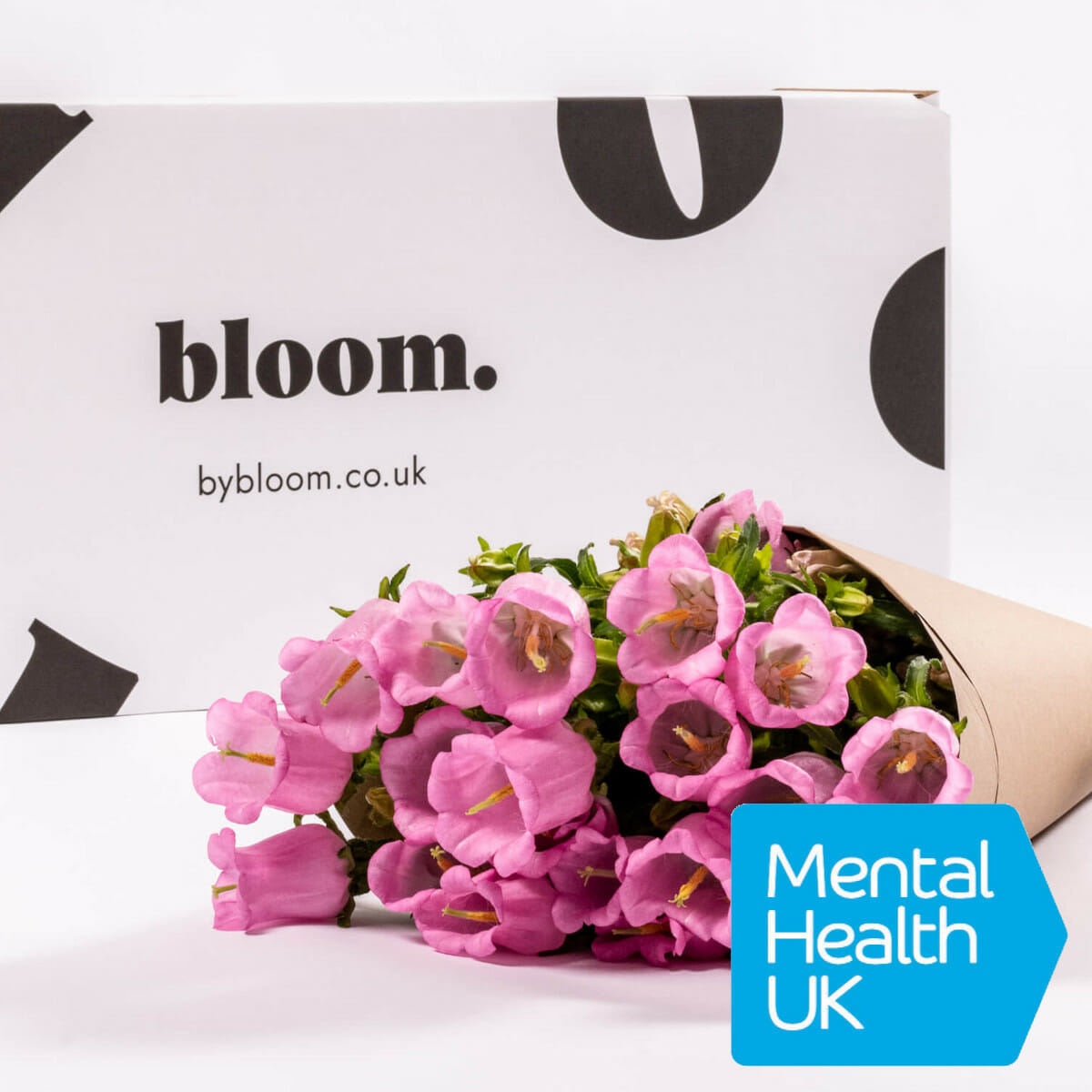 Bloom Flower Delivery | Pink Campanula