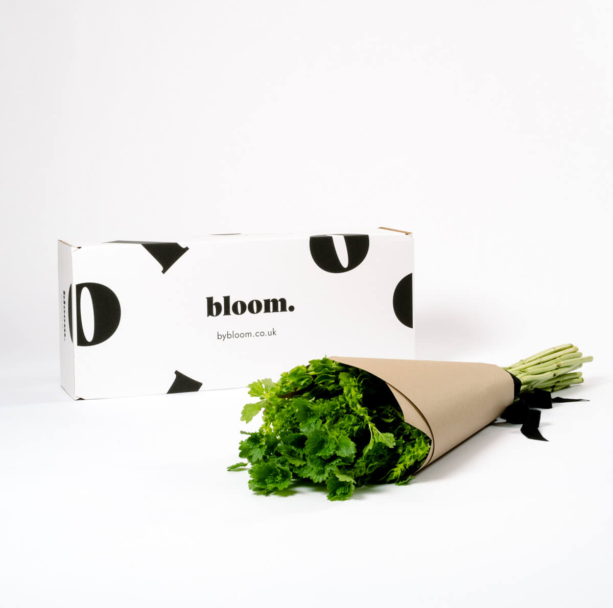 Bloom Flower Delivery | Mollucella