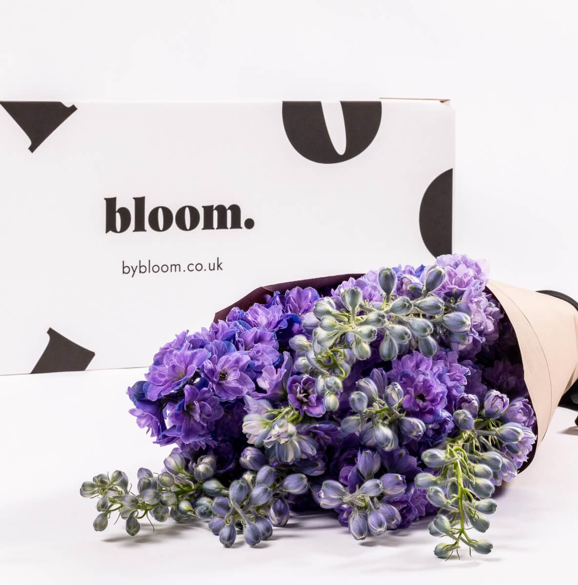 Bloom Flower Delivery | Purple Velvet Delphinium