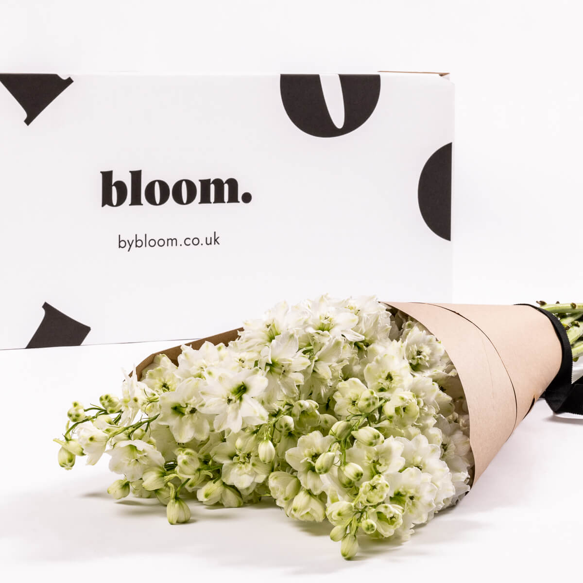 Bloom Flower Delivery | Porcelain White Delphinium