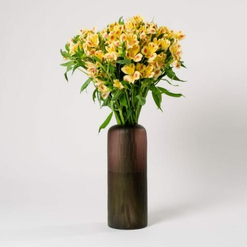 Subscription Flower for the Week - Yellow Alstroemeria